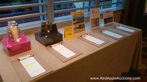 Silent auction in Florida, Red Apple Auctions