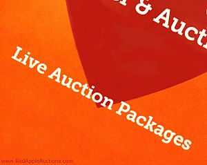 Live auction packages text from front of fundraising auction catalog