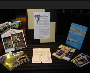 silent auction displays Inova closeup