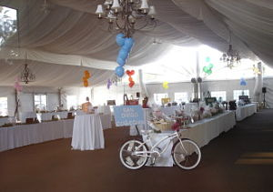 charity auction - Alpha Phi of San Diego silent auction