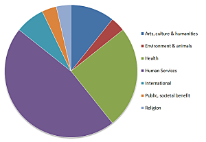 2015 nonprofit auctions pie chart