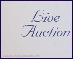 Live auction phrase in catalog
